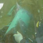 Subsea Pipeline Repair